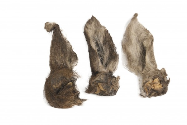 Hirschohren mit Fell (3 Stück/Beutel)